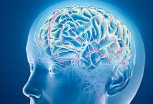 Zanimljive činjenice o sposobnosti pamćenja 3294