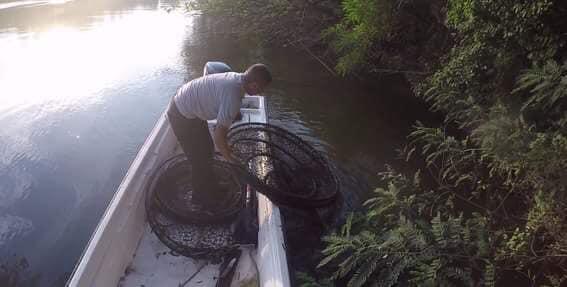 AKCIJE ribočuvara na Velikoj Moravi- »Pale« dve ekipe mrežaroša(FOTO) 8168