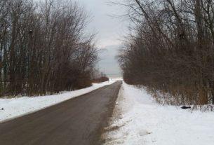 Treća žrtva ledenog vremena u Srbiji 12805