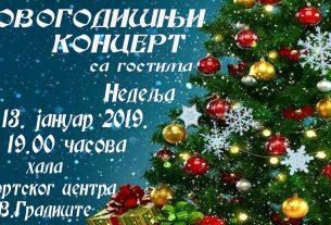 """Veliko Gradište: Novogodišnji koncert ANIP """"Vlastimir Pavlović Carevac"""" 13763"""