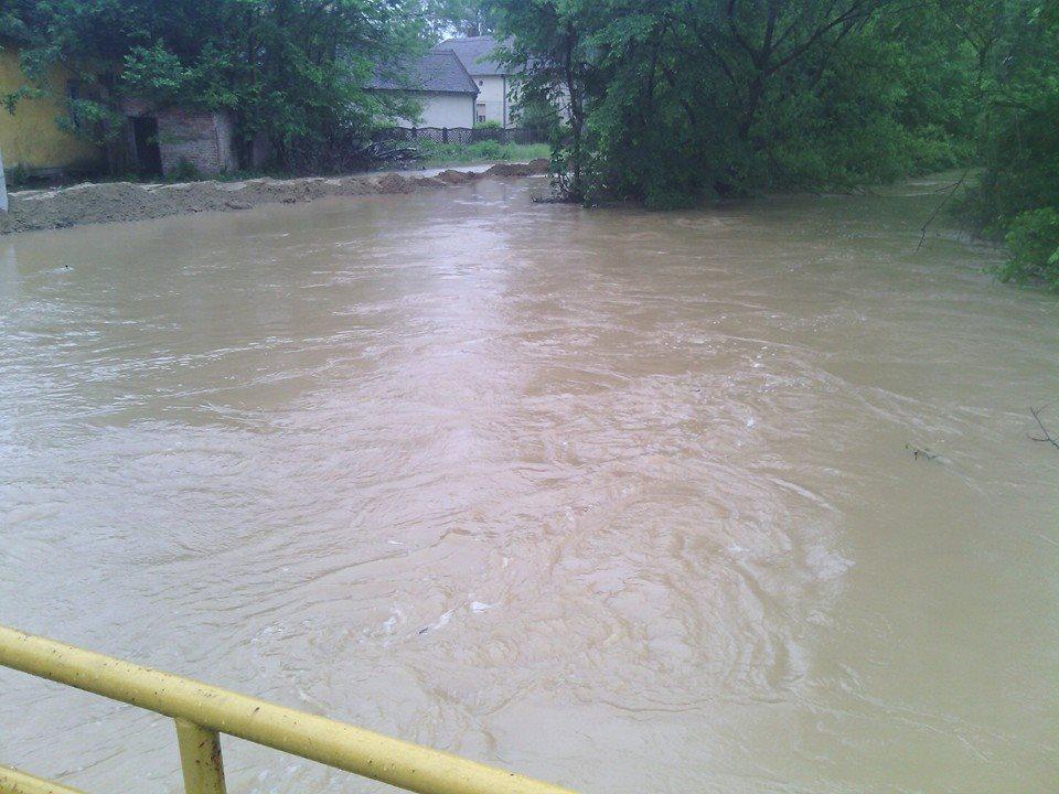 Uvedene vanredne odbrane od poplava u Srbiji 19162