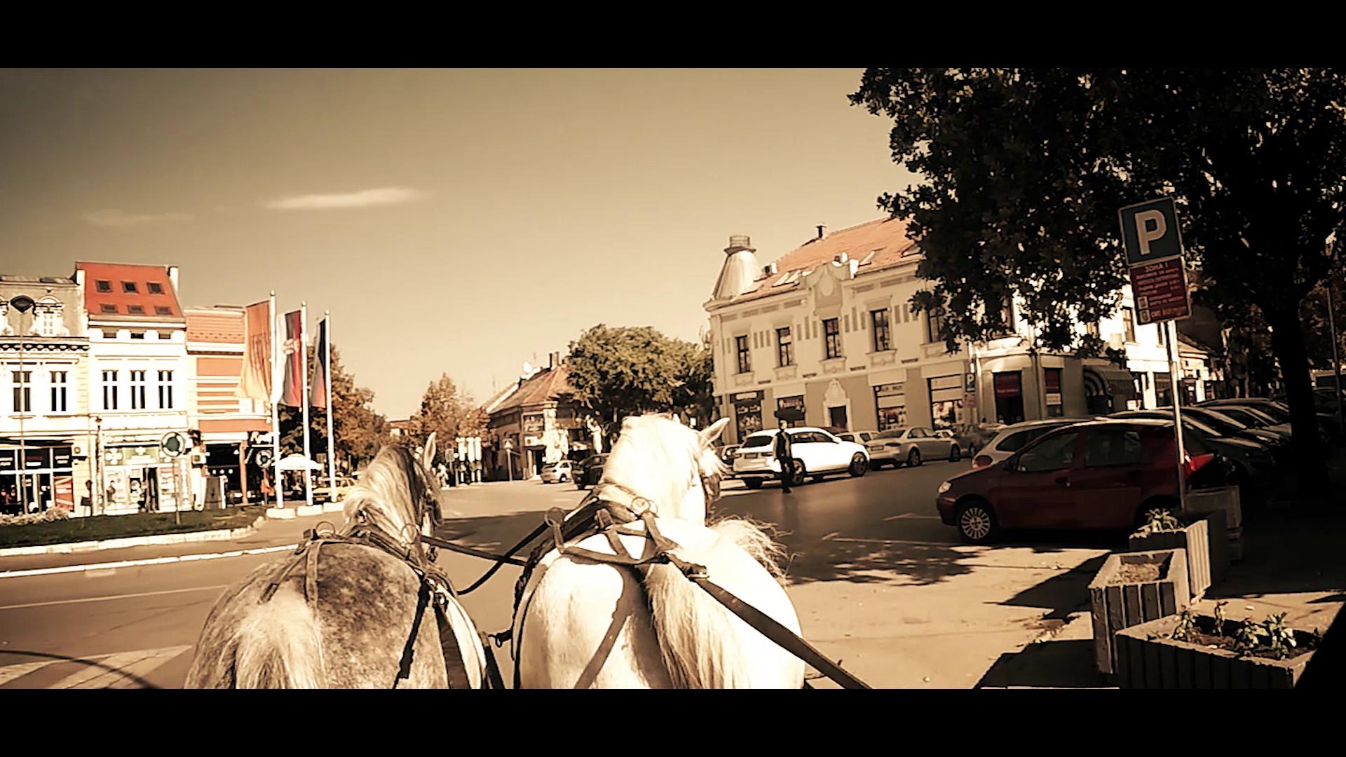 """Premijera filma  """"Ljubičevske konjičke igre-igre slobode"""" u utorak 15. januara 2019.godine VIDEO 13725"""