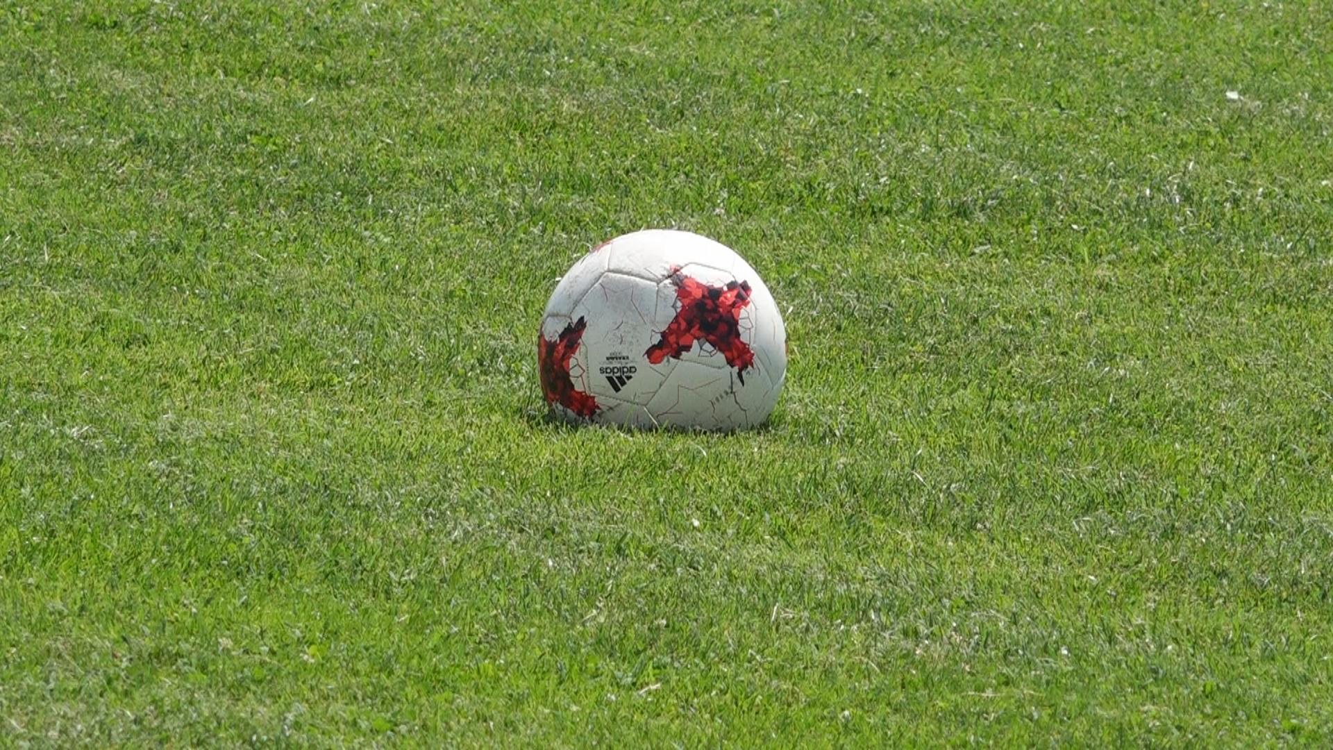 Evropsko fudbalsko prvenstvo odloženo za 2021. 31798