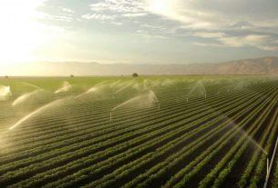 Prolećna akcija: Analiza vode za navodnjavanje 15938