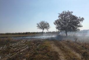 Apel: Opasnost od šumskih požara 25164