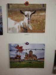 Otvorena izložba #kulturazamlade u Maloj galeriji Narodnog muzeja 26127