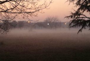 Magla otežava saobraćaj u Braničevskom okrugu 26913