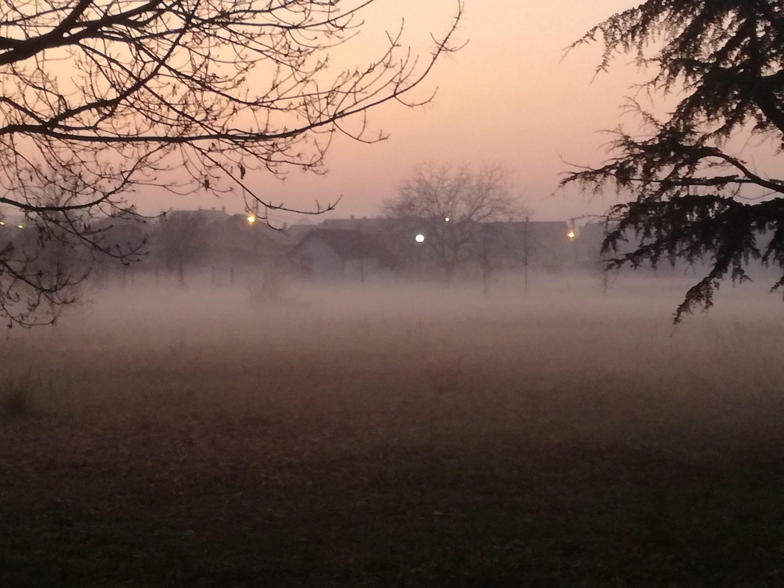 Košava u petak rasteruje maglu, evo kakvo nas vreme očekuje do kraja meseca 28263