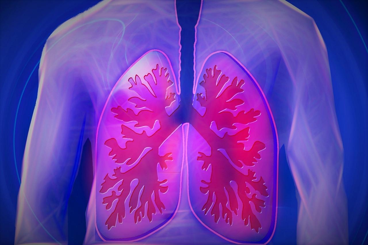 """Pluća se """"magično"""" sama oporave nakon prestanka pušenja 29137"""