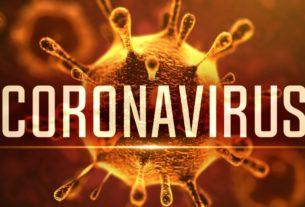 Dnevni koronavirus izveštaj 31935