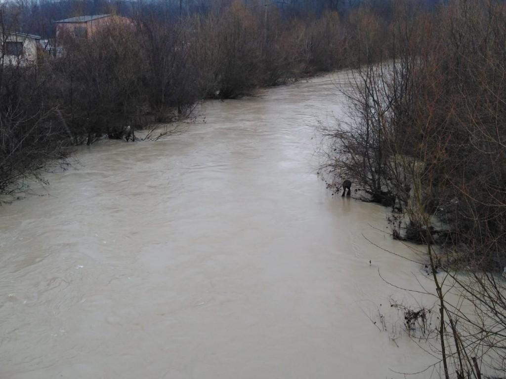 Reka Pek zagađena! Upozorenje građanima! (FOTO) 51938